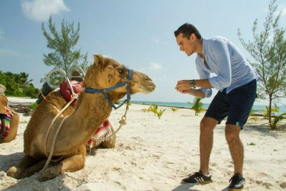 Reef Adventure & Camel Safari Combo