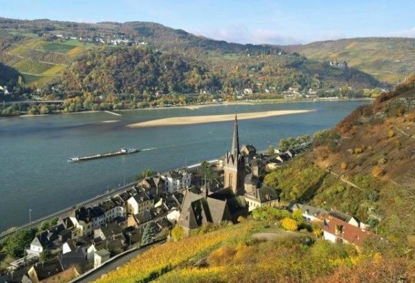 Rhine Valley Half-Day Trip from Frankfurt
