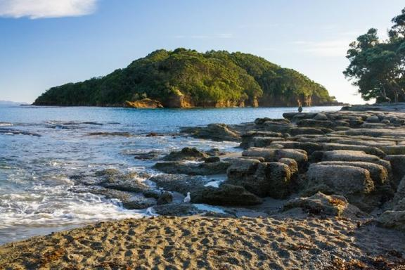 4-Day Bay of Islands Tour
