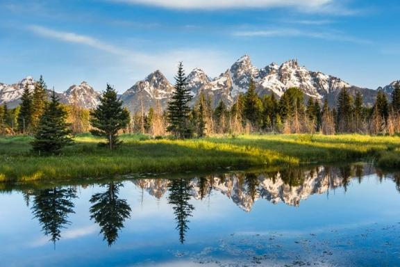 5-Day Yellowstone, Grand Teton, Salt Lake City and Stone Lake Bird Sanctuary Tour
