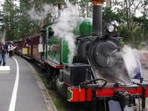 puffing billy tour:Puffing Billy Railway Tour with Yarra Valley Wineries