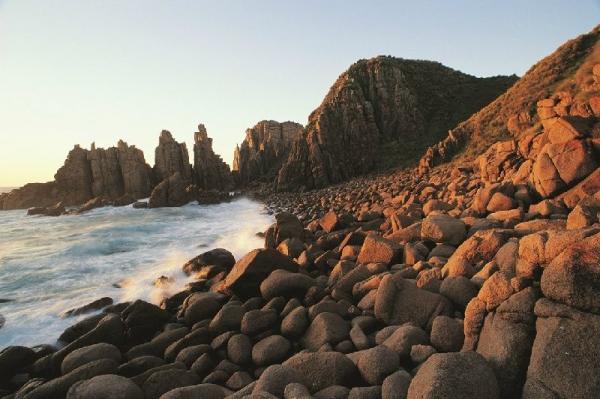 1-Day Phillip Island Tour