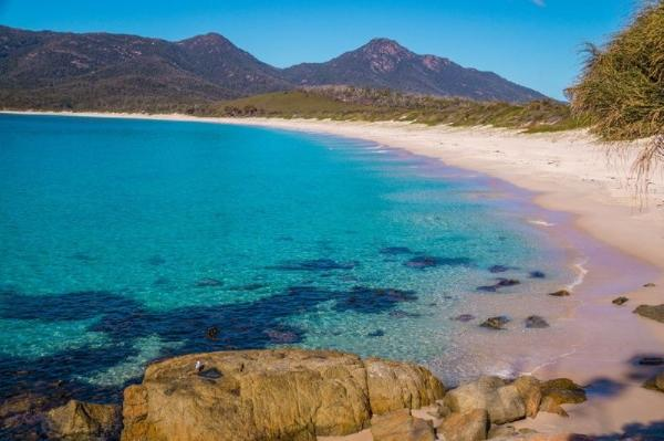 Wineglass Bay, Ross & East Coast Day Trip