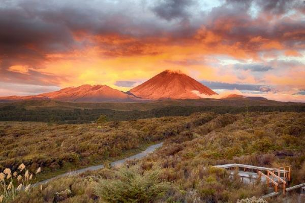 16-Day Full New Zealand Mountain Bike Dreamers Tour