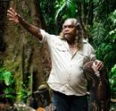 Daintree Rainforest & Ngadiku Day Tour