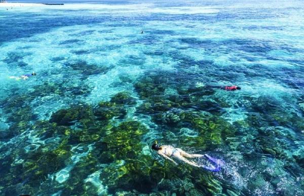 Grand Cairns & Great Barrier Reef Tour