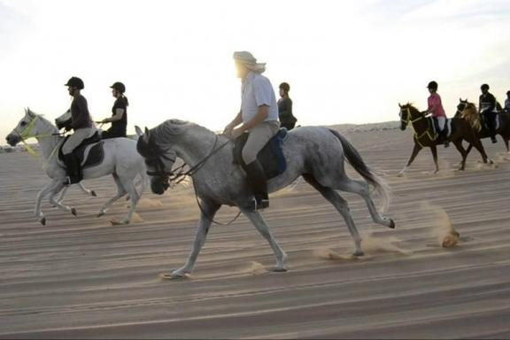 Desert Horse Riding Adventure from Dubai