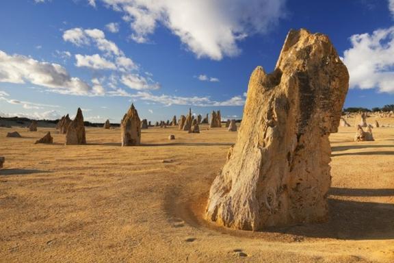 6-Day Western Australia Coastal Adventure: Perth to Exmouth