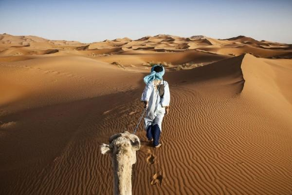 8-Day Morocco Kasbahs & Desert Adventure
