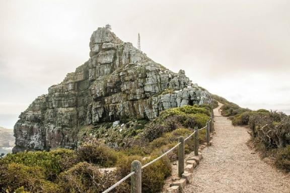 1-Day Cape Peninsula Tour