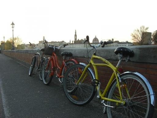 2.5-Hour Florence Panoramic Sunset Cruiser Bike Tour