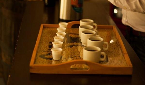 Bogota Coffee Farm Experience