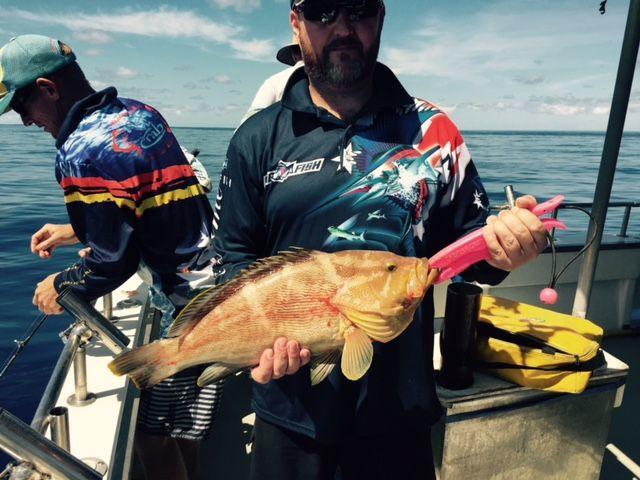 5-Hour Sunshine Coast Deep Sea Fishing Trip