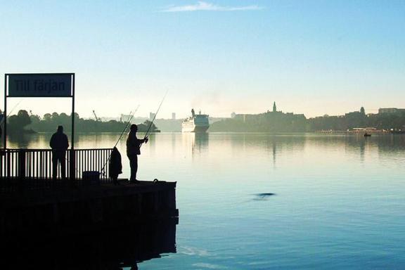 Good Morning Stockholm Boat Tour