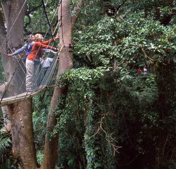 Kinabalu National Park & Poring Hot Springs Day Tour
