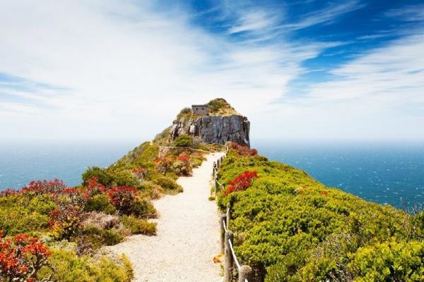 Private Cape Peninsula All-Inclusive Tour