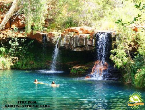14 Day Western Australia Tour: Exmouth to Darwin Safari