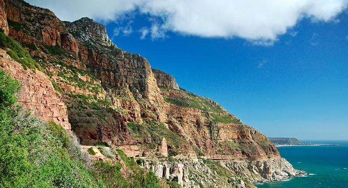 1-Day Cape Peninsula Private Tour
