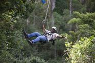 Cape Town Zipline Canopy Tour**W/ Cheetah and Ape Experience**