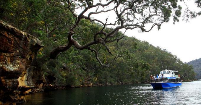 Ku-Ring-Gai Chase National Park Day Trip