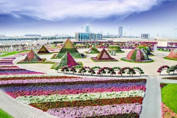 Dubai Butterfly Garden and Miracle Garden Tour