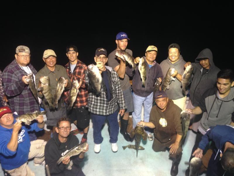 Twilight Sea Fishing Trips