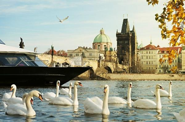 11-Day Central Europe Holiday Package: Berlin to Paris