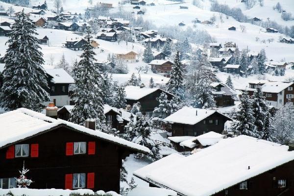 5-Hour Swiss Alps Winter Adventure from Interlaken