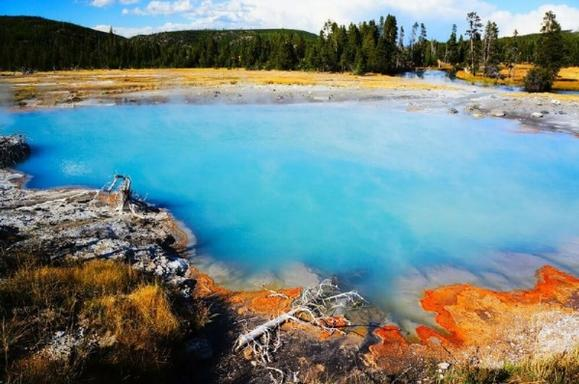 Yellowstone Lower Loop Deluxe All-Inclusive Private Day Tour From West Yellowstone