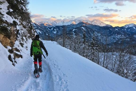 Half-Day Swiss Alps Snowshoe Tour