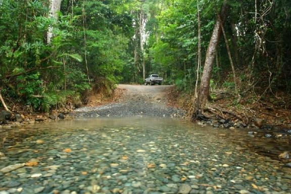 1-Day Daintree Rainforest, Cape Tribulation & 4WD Bloomfield Track Day Tour