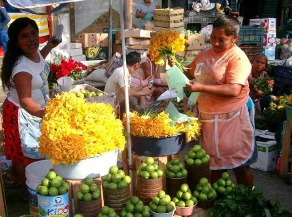Mexican Food Cooking Class & Market Tour