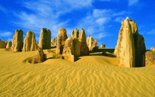 The Pinnacles, Kangaroo's, Koala's and Cave Tour