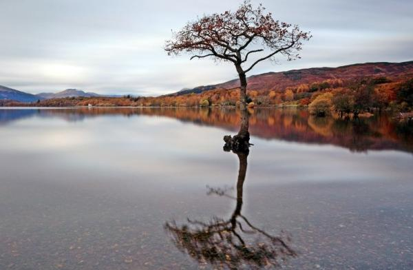 Loch Lomond, The Kelpies, and Stirling Day Tour from Edinburgh