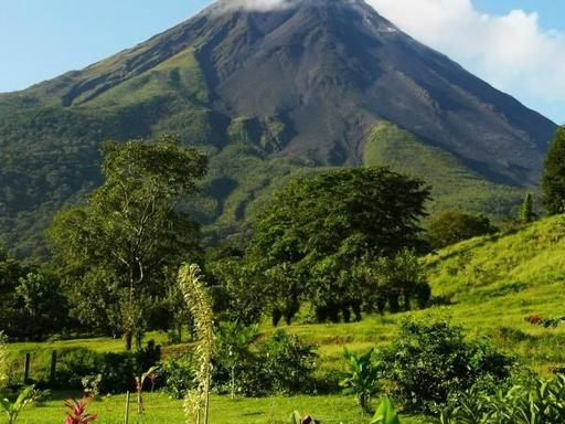 13-Day Grand Costa Rica Adventure: Monteverde, Arenal, & Tortuguero