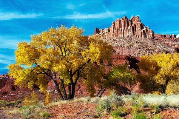 10-Day Canyon Adventure Tour: Monument Valley,  Arches, Bryce, Zion, and Grand Canyon