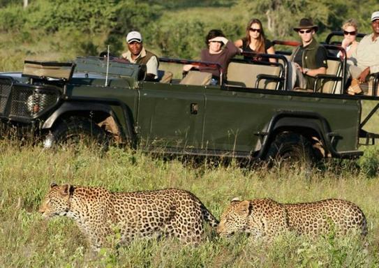 8-Day Wildlife Holiday in Uganda: Queen Elizabeth, Lake Mburo, & Bwindi National Park