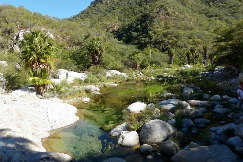 Baja Desert, Waterfalls and Canyons Day Trip