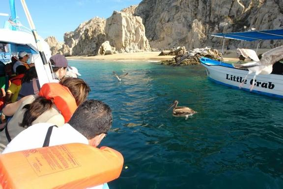 Cabo Deluxe City Tour w/ Glass Bottom Boat Cruise
