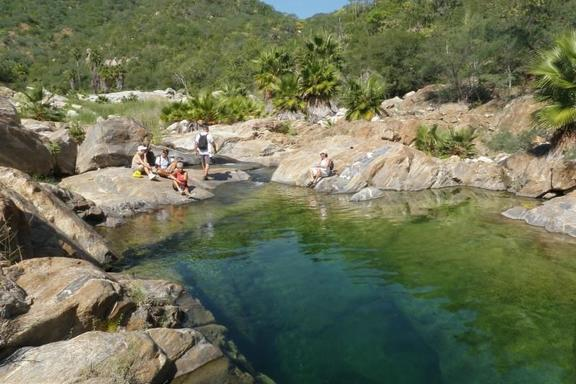 Baja Desert, Waterfalls and Canyons Day Trip