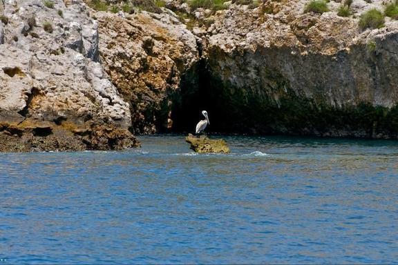 Puerto Vallarta Sailing & Snorkeling Tour to Los Arcos