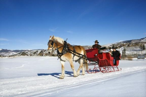 Banff Private Sleigh Ride