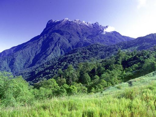 Kinabalu Park and Poring Hot Spring Private Tour with Lunch