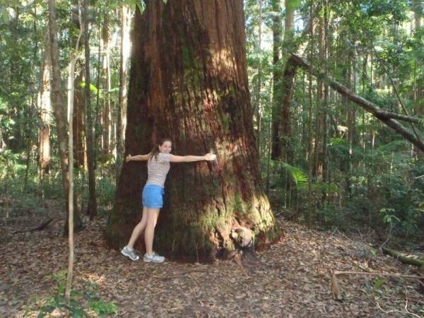 17-Day Australia Self-Guided Adventure Tour: Sydney to Cairns