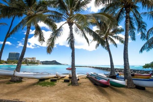 6-Day Oahu Tour: Honolulu, Pearl Harbor, Polynesian Center, Diamond Head Lookout, & Island Day Trip