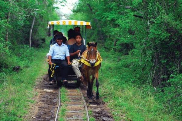 Cenotes and Haciendas Day Tour