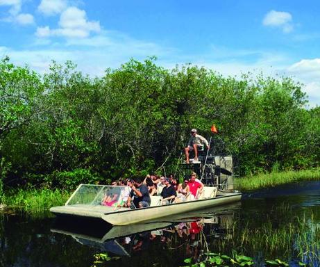 48-Hour Hop-on, Hop-off City Tour with Everglades National Park Tour