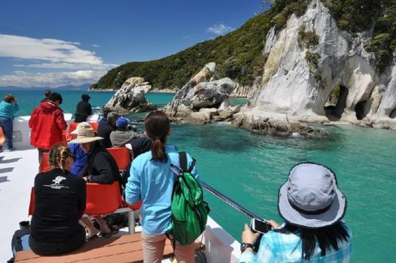 Abel Tasman Coast Scenic Morning Cruise