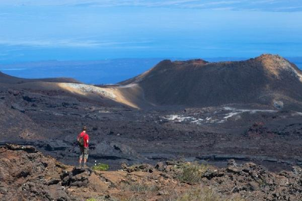 6-Day Galapagos Island Hopping: 4 Nights Santa Cruz Island & 1 Night Isabela Island
