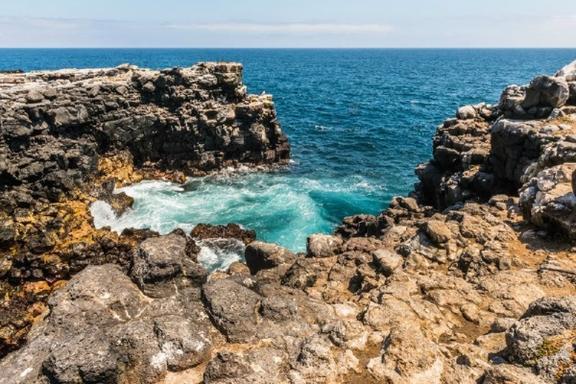 6-Day Galapagos Island Hopping: 4 Nights Santa Cruz Island & 1 Night Isabela Island